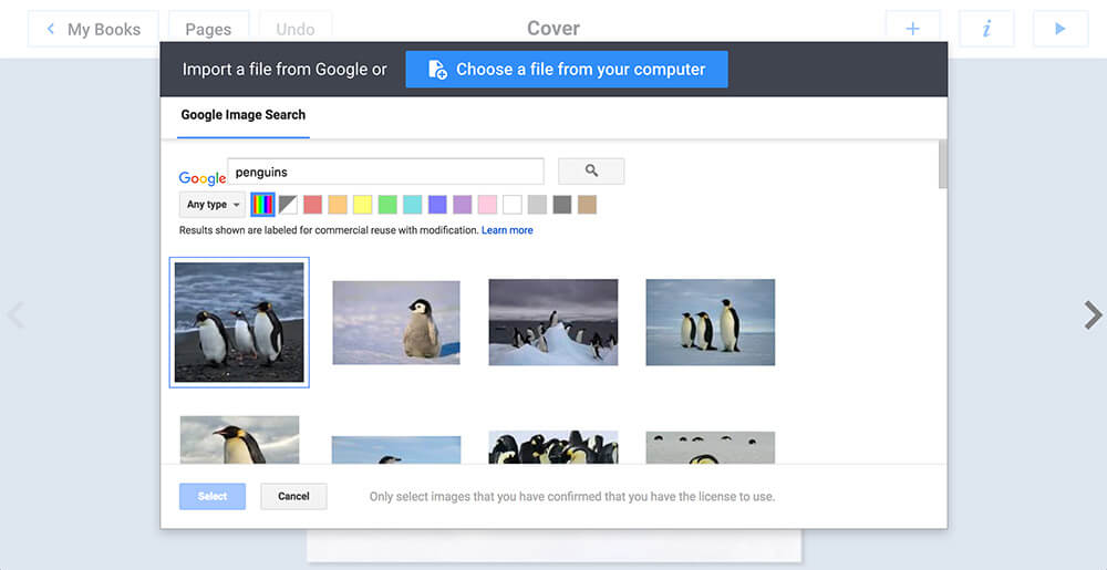 Performing a search for penguins in Google Image Search